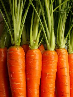 La carotte ! Que la bonne humeur soit…
