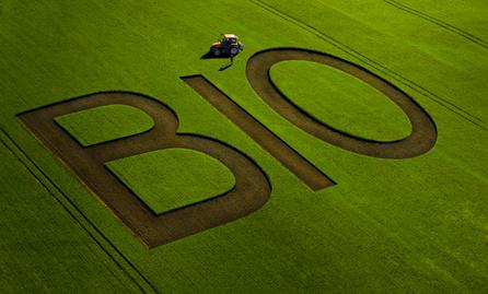 L'agriculture bio progresse : le consommateur aussi !