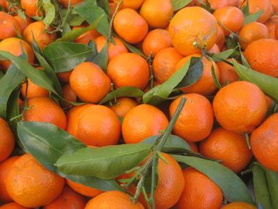 La mandarine contre le diabète !