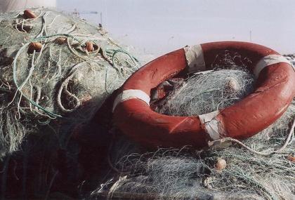 Findus est du côté de la pêche durable