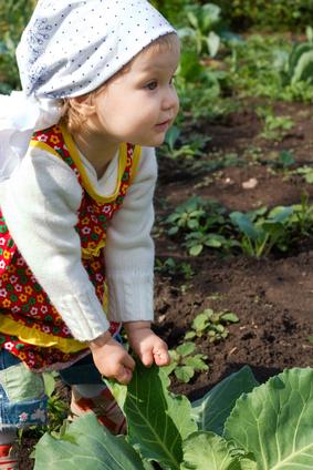Légumes : laissez vos enfants les choisir