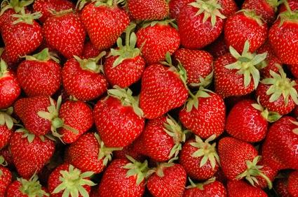 Les fraises efficaces contre les ulcères