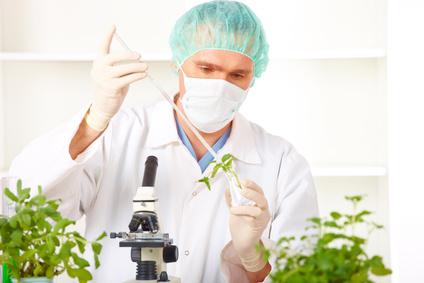 Apparition de l'étiquetage «sans OGM»