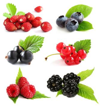 Quelles sont ces fruits rouges bons pour le cerveau ?