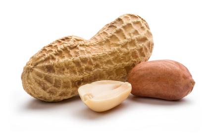 Stop aux allergies liées aux cacahuètes !
